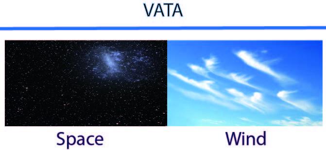 vata-dosha-sayoni-care