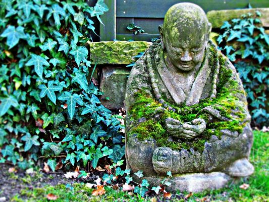 How to remain centered and calm during the chaos sayoni care